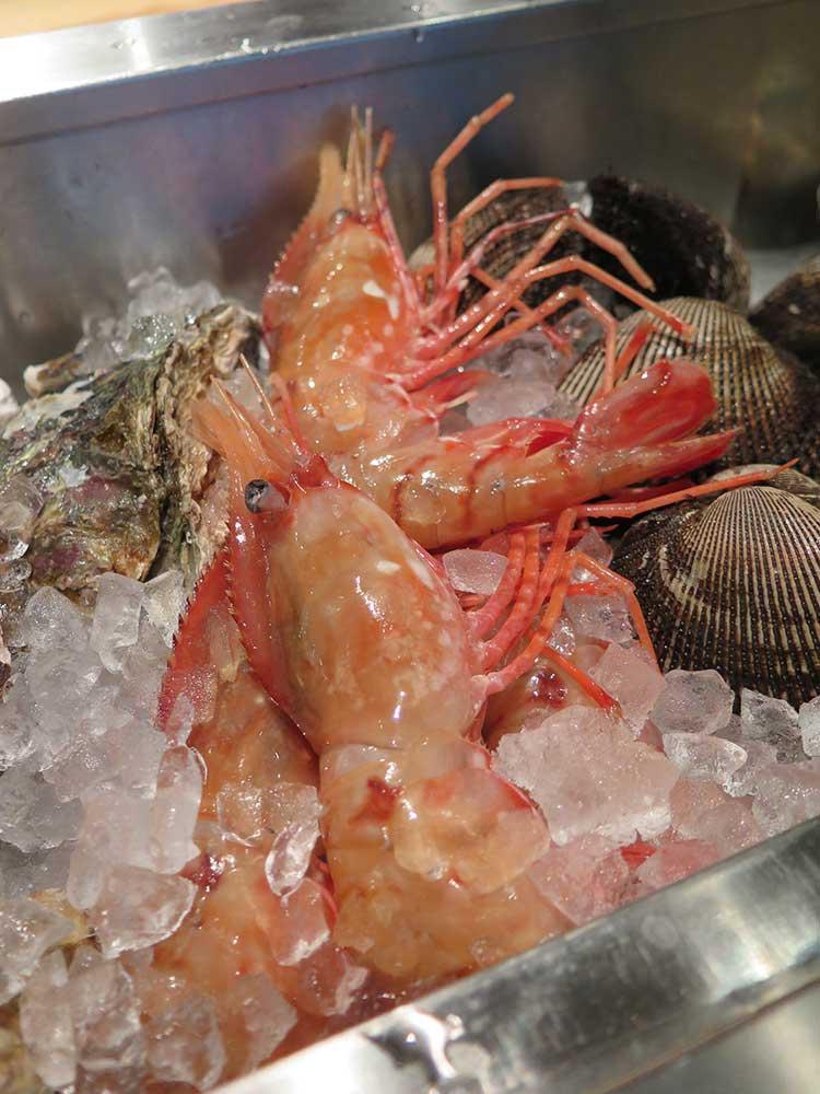 大きなボタンエビ、岩牡蠣、アカガイ