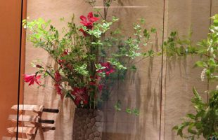 左から、ドウダン、八重咲アマリリス