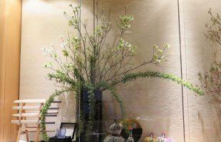 左から、花水木、コデマリ