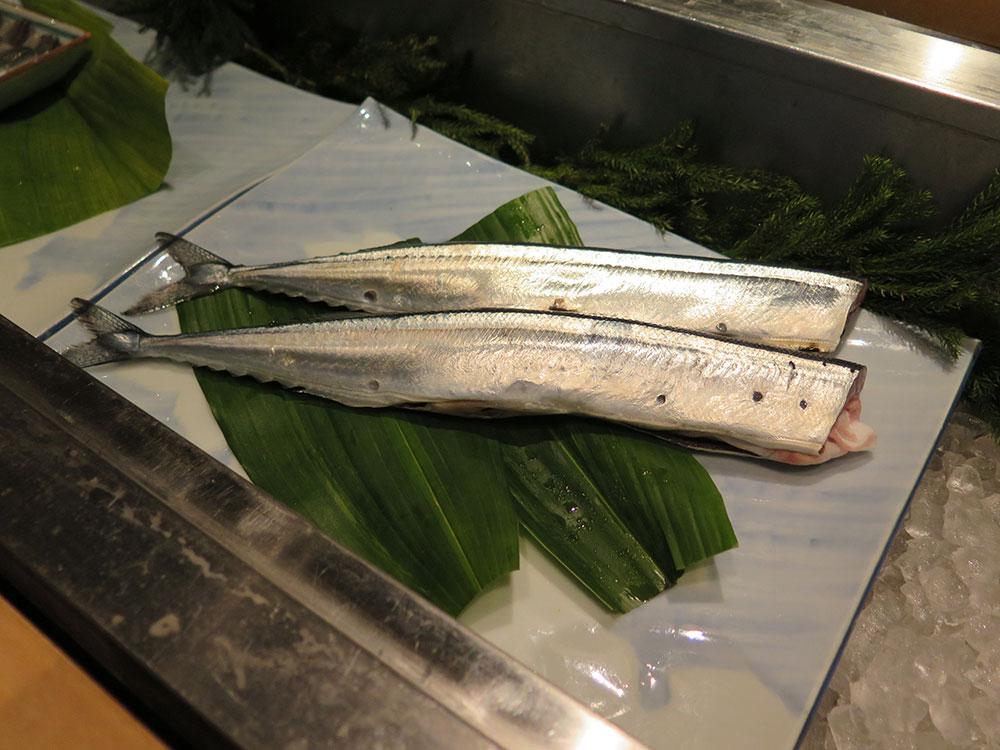 北海道産サンマの新物