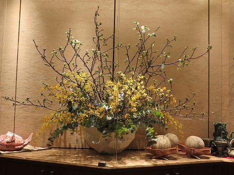 中央は大島桜、丸葉ユーカリ、オブリザタム