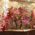 紅葉、花梨、ケイトウ、スプレーマム