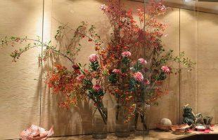 ドウダン(紅葉)、ロウヤ柿、マユミ、クラシックマム