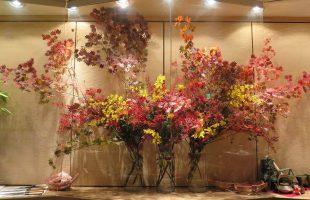 モミジ、雪柳(紅葉)、スプレーマム、糸菊、オンシジューム