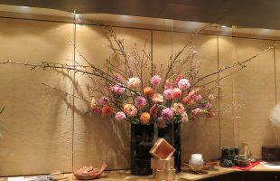 御殿桜(八重咲)、啓翁桜(一重咲き)、ダリア(2種類)、マム(シルキーガール)